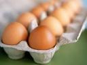 Kas gali suvalgyti 32 kiaušinius per minutę?