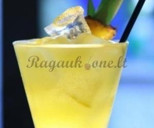 Gaivus alkoholinis kokteilis