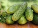 Švelniai raugti agurkai