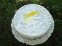 Biskvitinis tortas su pistacijomis ir ananasų kremu
