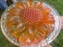 Žėlė tortas