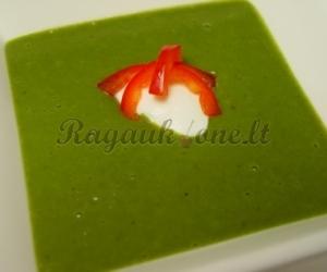 Daržovių sriuba su špinatais