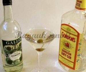 Alkoholinis kokteilis su martiniu