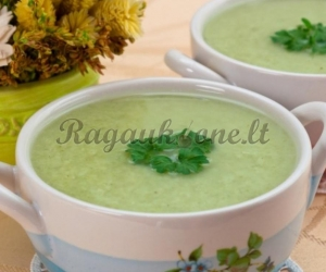 Trinta vištienos sriuba su brokoliais